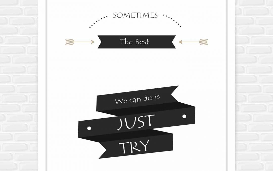 Sometimes the best we can do is just try.